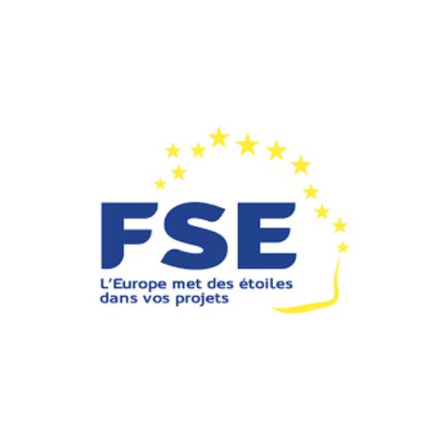 FSE (1)